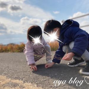 ❁《兄妹日記》はじめての三つ編み・田舎のお散歩♡*。゚❁