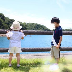 ❁{夏休み}☆男の子ママの宿命?!・娘の後ろ姿が可愛い♡*。゚❁