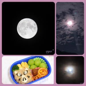 ❁幼稚園弁当*一眼レフで満月を撮ってみた♪*楽天到着品♡*。゚❁