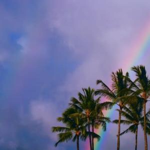 2019年冬ハワイ~Happiness~