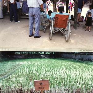 旅の過去写真 韓国民俗村・・・