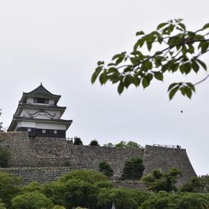丸亀城へ・・・+αファイナル