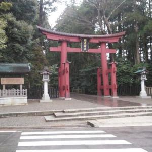 1月24日新潟県弥彦へ