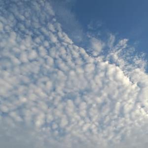 巻積雲。。。