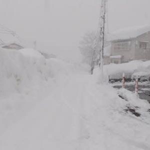 2021年1月10日大雪