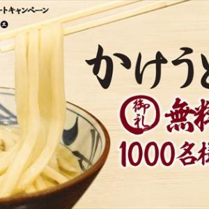 丸亀製麺かけうどん無料クーポン1000名プレゼントキャンペーン