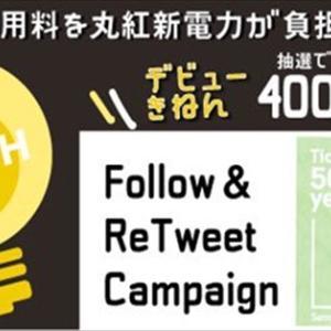 サーティワンアイスクリーム500円ギフト券×400名プレゼントキャンペーン
