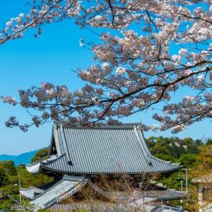 石川県にも所縁がある哲学の道