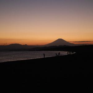 目が離せない!海の夕陽散歩で出会った可愛い子たち