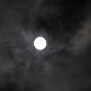 今夜は満月だった