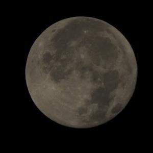 令和最後の満月 コールドムーン