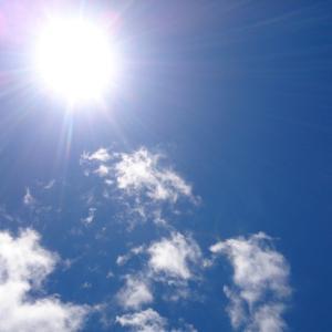 8月 夏バテ「気力」を動かす栄養素