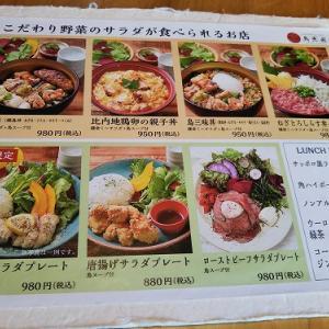飲食店頑張れシリーズ2 鳥光圀 『鳥三昧丼&ローストビーフサラダプレート』