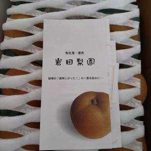 フルーツ三昧 『松阪なし&東浦ぶどう』