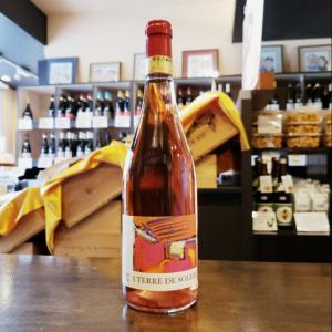 【安くて旨いローヌのワインとして評価急上昇中!】