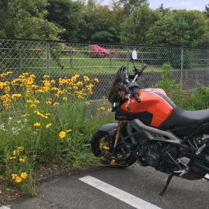 バイクへの愛情と親の愛