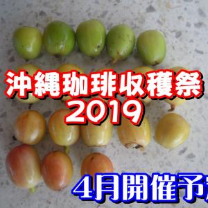 沖縄珈琲収穫祭 2019