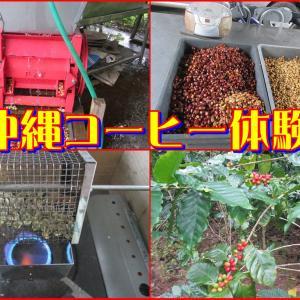 沖縄コーヒー体験 実施中
