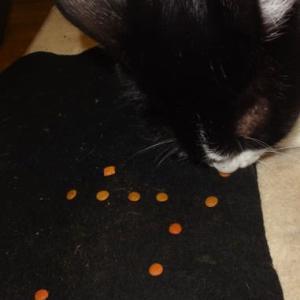 セン(愛猫)の食事風景は、とても上品です。