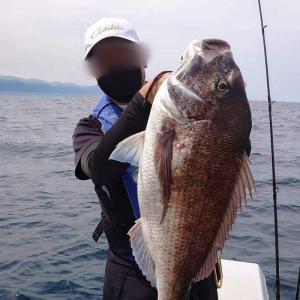 Birthday Fish ヽ(゚∀゚)ノ