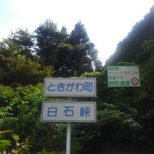 埼玉ヒルクライムの聖地?白石峠を初めてのぼった