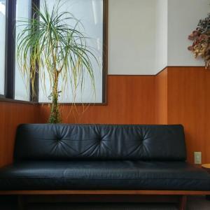 マスターウォールのソファを買った