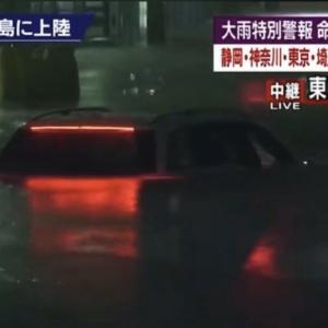 東京の娘たちが台風で大変よ