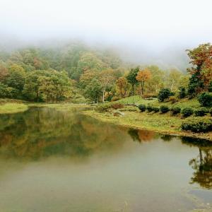 雨でも楽しめる湯沢高原の紅葉。