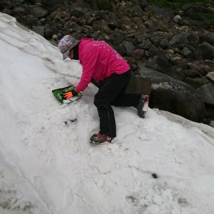雪を埋める!埋める!乗鞍大雪渓。