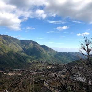 お正月はパワースポット巡り?!世界遺産の熊野那智大社&那智の滝、圧巻でした!