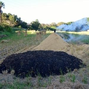 刈田に立ち昇る燻炭の煙