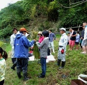 米作り体験会のお手伝い