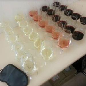 【ワインスクール 初級コース 第1回 目隠し試飲】
