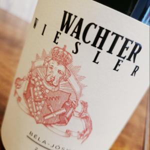 【最上級コース 秀逸な辛口白ワイン!オーストリアワイン!で人気のあったワイン④】