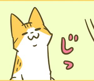 イケメンの趣味(web掲載のお知らせ)