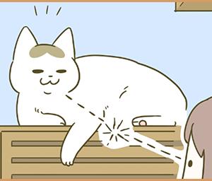 笑む猫と新メンバー