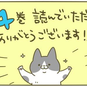 お礼とお知らせと猫