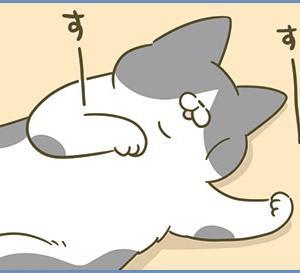 寝顔(web掲載のお知らせ)