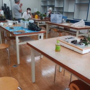 盆栽の勉強会