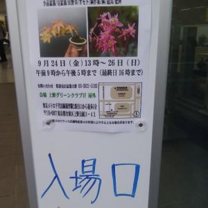 上野グリーンクラブ 大収穫祭