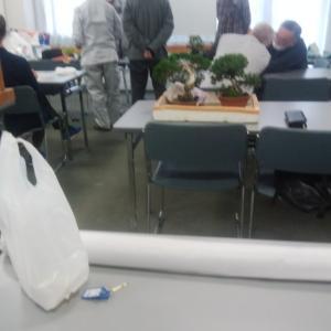 盆栽勉強会の展示支度