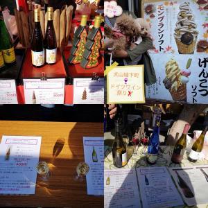 犬山城下町☆ドイツワイン祭り♪