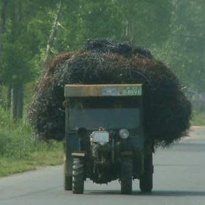 中国人生態研究:トラジに乗る中国人の巻(kickstart my Heart_motly Crue)
