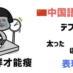 中国語で「でぶ」の表現方法。中国人は3桁超えの体重の人ばかり