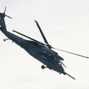 浜松基地航空祭2019 午後も逆光の中HEROとF-2