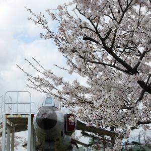 4月の遠征は松島 リベンジなる