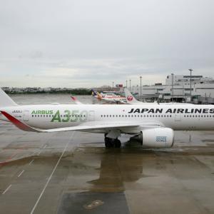 雨の福岡2 A350デパーチャー