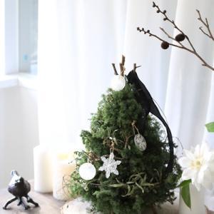 【募集】X'mas special ws♪クリスマスツリー&オーナメント作りましょ!
