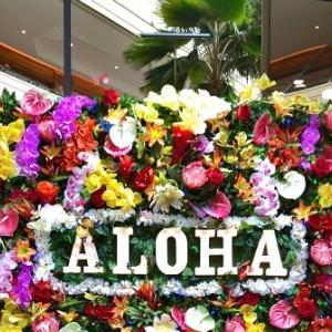 """"""" お客さん """" がハワイに求めるもの"""