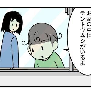 もう冬なのに…家の中に「テントウムシ」が現れた驚きの理由とは!?